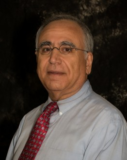 Photo of Dr. Saleh F. Dyke, MD